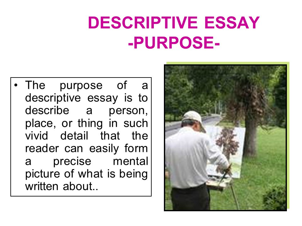 person place or thing essay Profile of a person, place, or thing students will write an essay that profiles an individual, group, place, or event based on personal observation in addition to addressing these features.