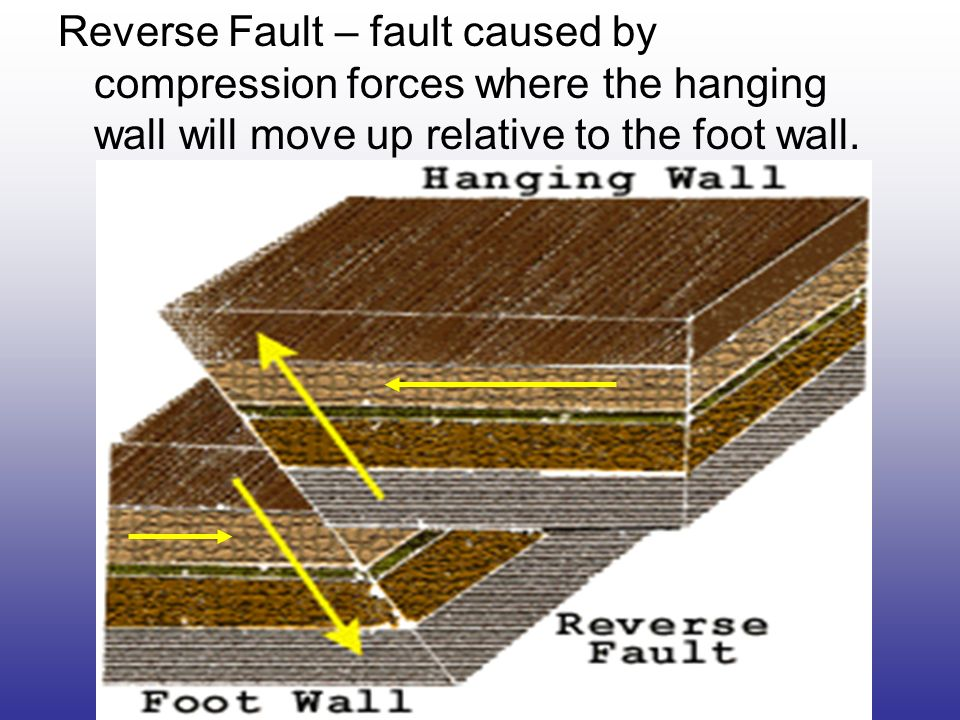Reverse Fault – fault caused by compression forces where the hanging wall will move up relative to the foot wall.