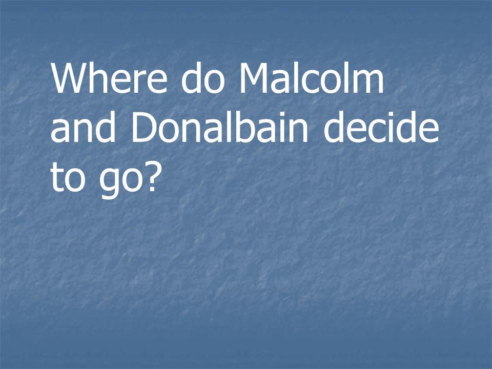 Where do Malcolm and Donalbain decide to go