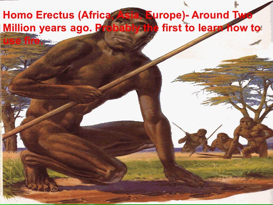 Homo Erectus (Africa, Asia, Europe)- Around Two Million years ago