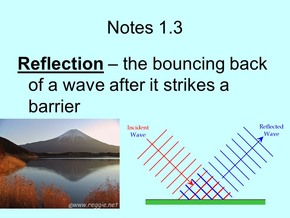 Notes 1.3 Reflection – the bouncing back of a wave after it strikes a barrier
