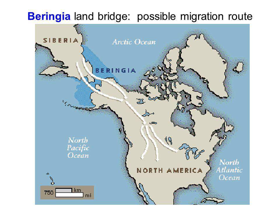 Beringia land bridge: possible migration route