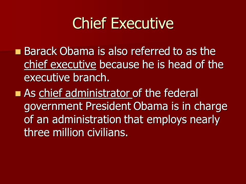 Chief Executive Barack Obama is also referred to as the chief executive because he is head of the executive branch.