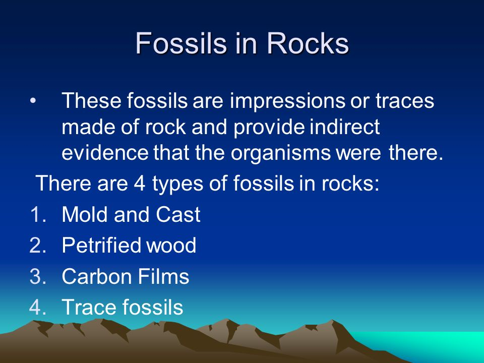 Fossils in Rocks These fossils are impressions or traces made of rock and provide indirect evidence that the organisms were there.