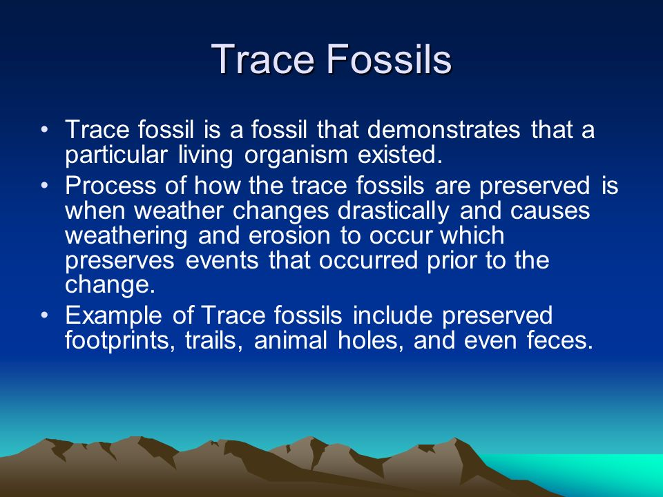 Trace Fossils Trace fossil is a fossil that demonstrates that a particular living organism existed.