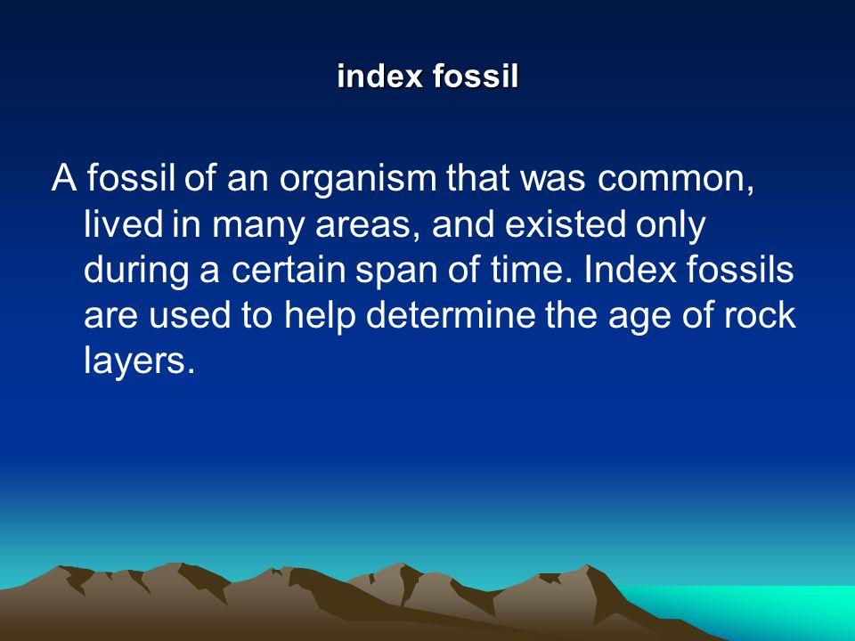index fossil