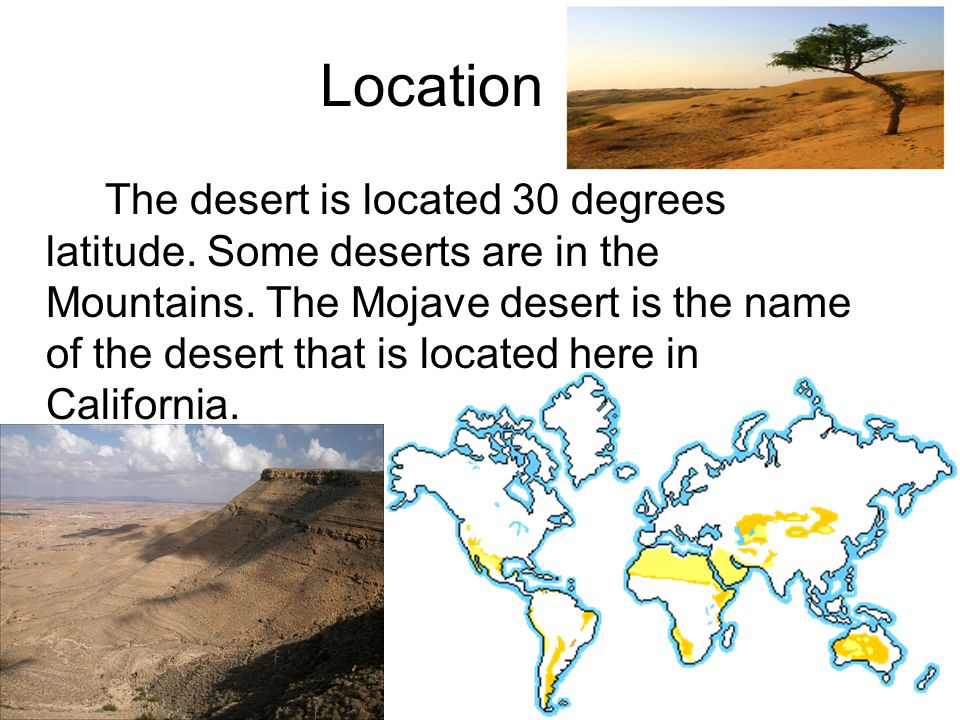 ecosystems mojave desert essay Ecosystems questions including why is important that players run to the bases between innings and where does rockaways population get its water from.