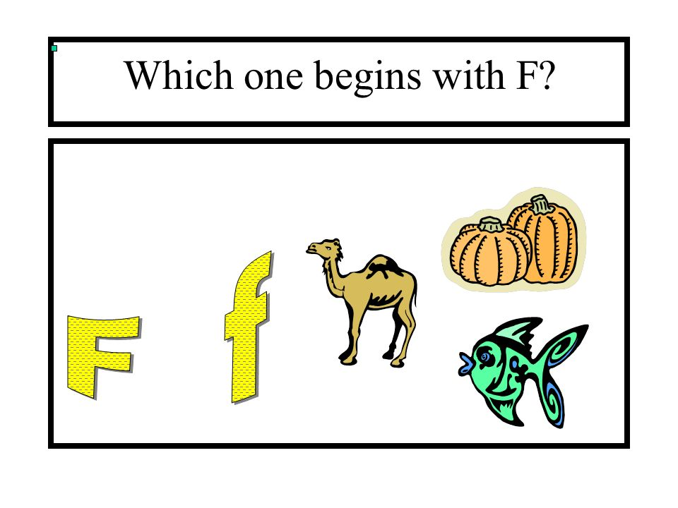 Which one begins with F F f