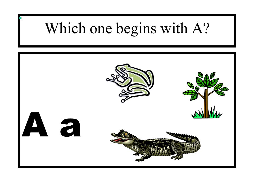 Which one begins with A A a