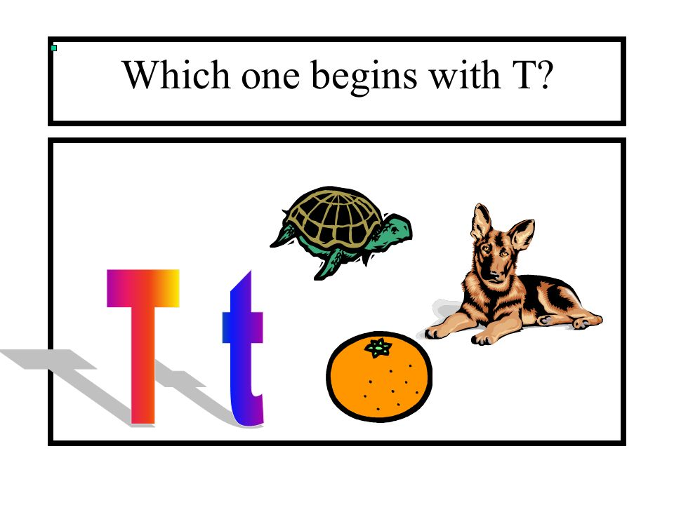Which one begins with T T t