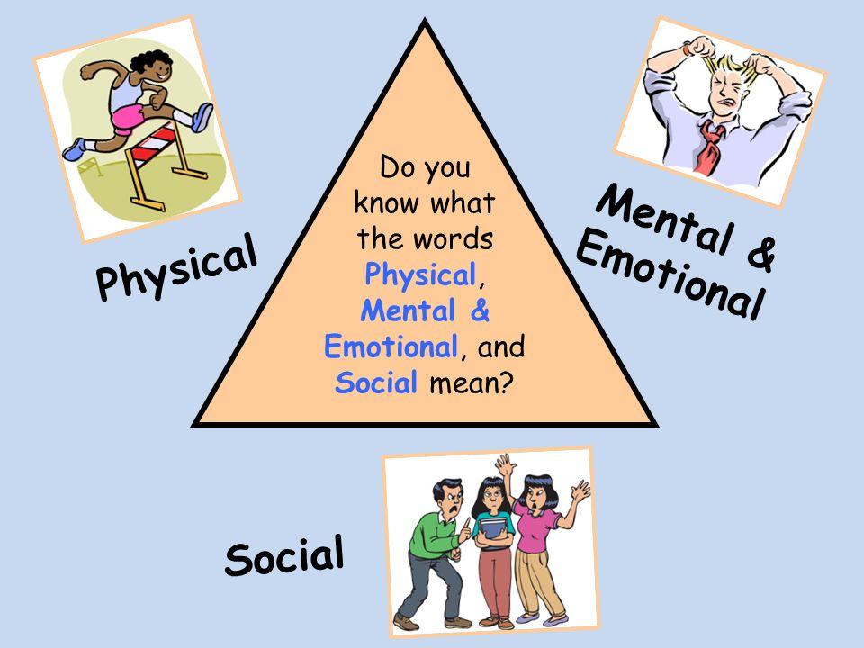 Social Anatomy Definition