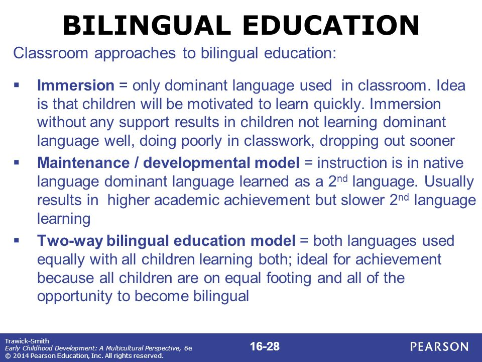 Bilingual Education Research Paper Help