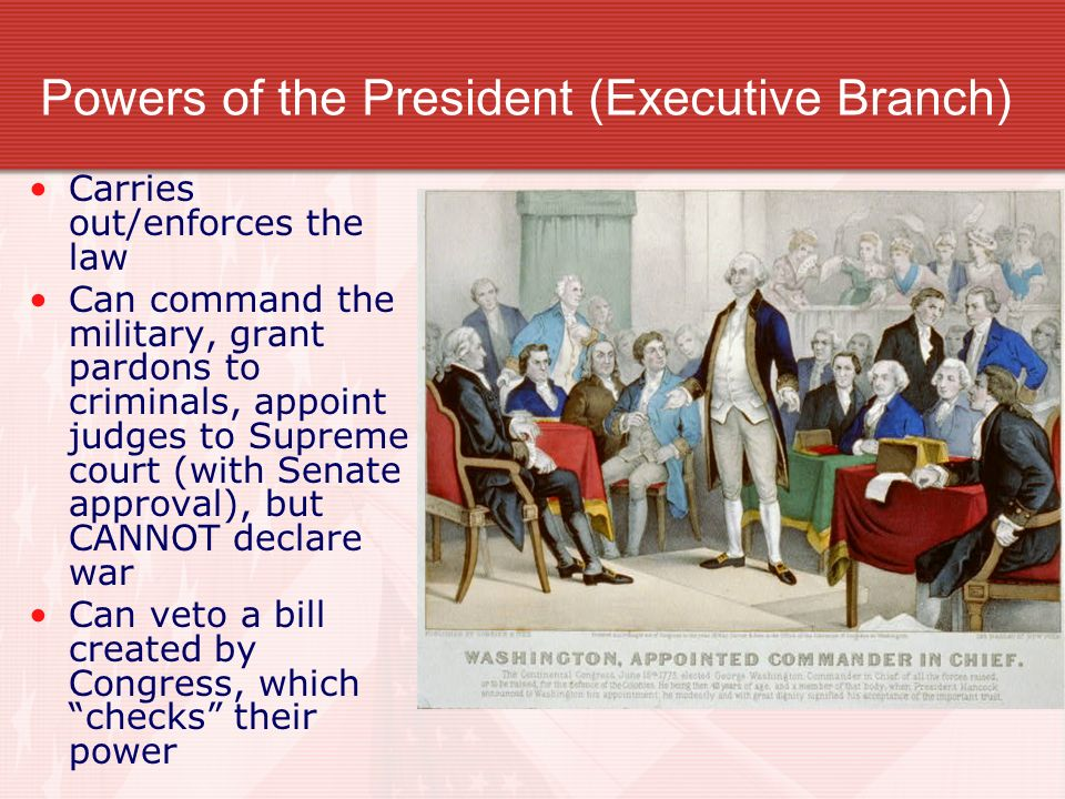Powers of the President (Executive Branch)