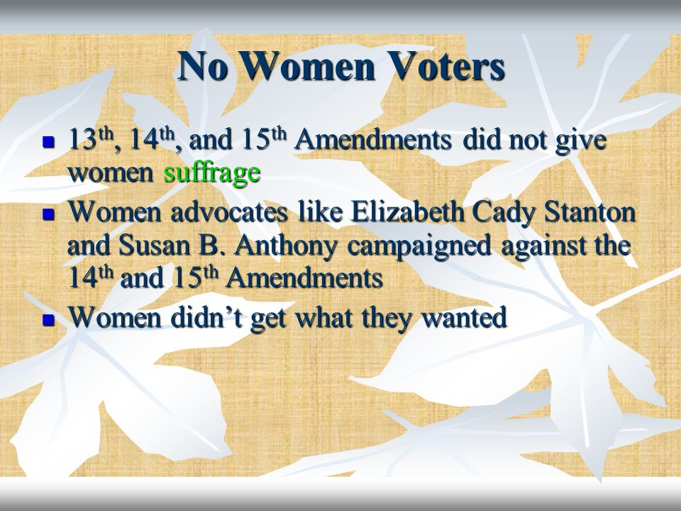 No Women Voters 13th, 14th, and 15th Amendments did not give women suffrage.