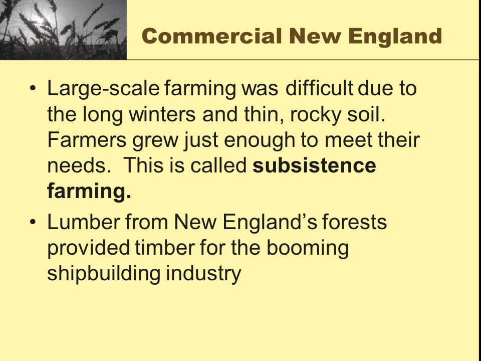 Commercial New England