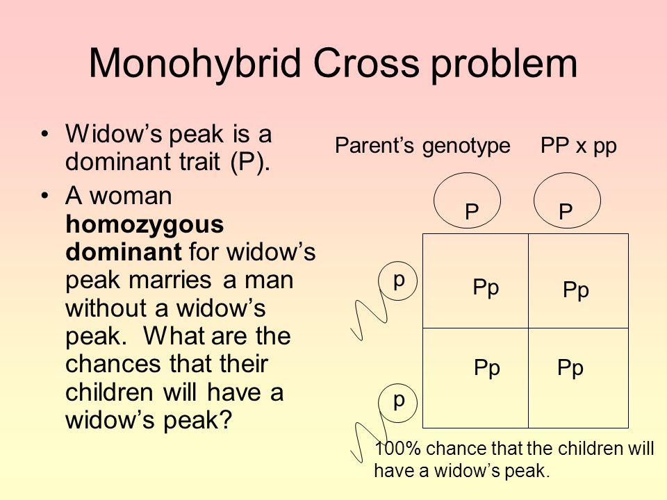 Monohybrid Cross problem