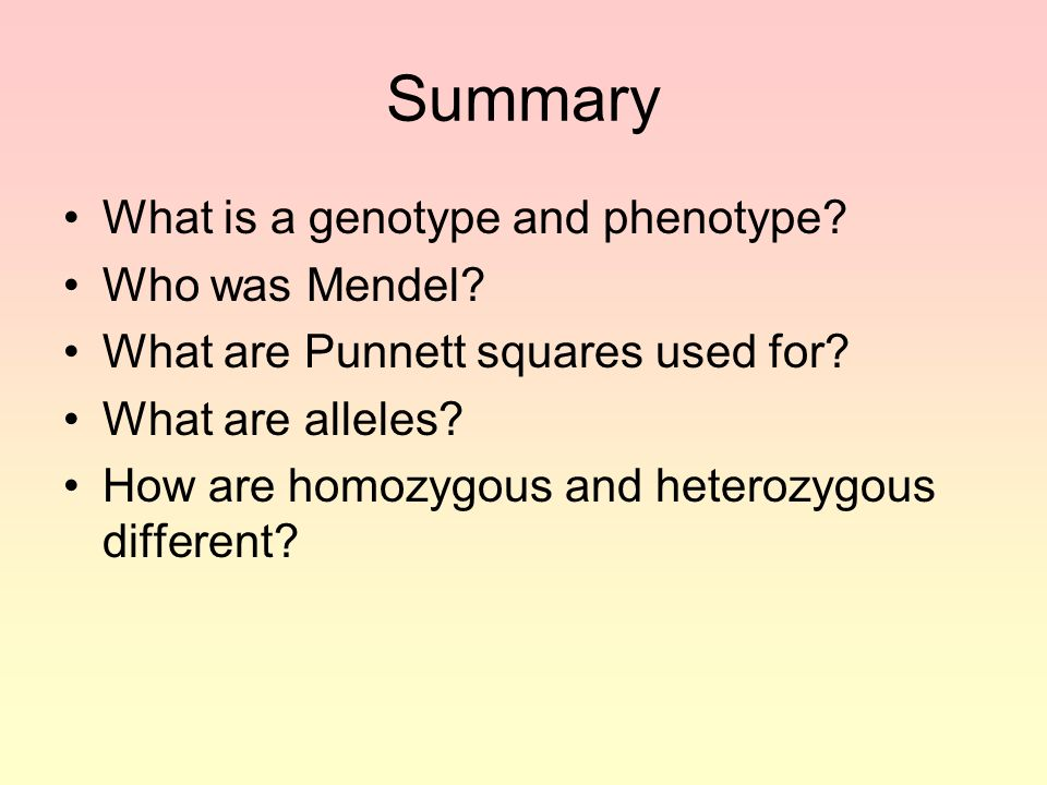 Summary What is a genotype and phenotype Who was Mendel