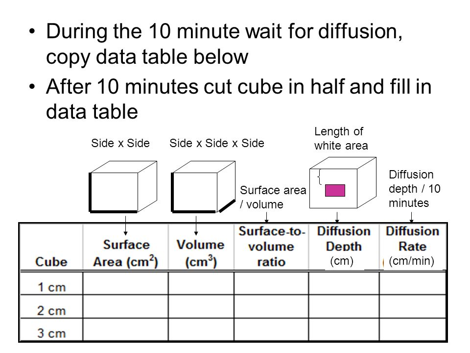 During the 10 minute wait for diffusion, copy data table below