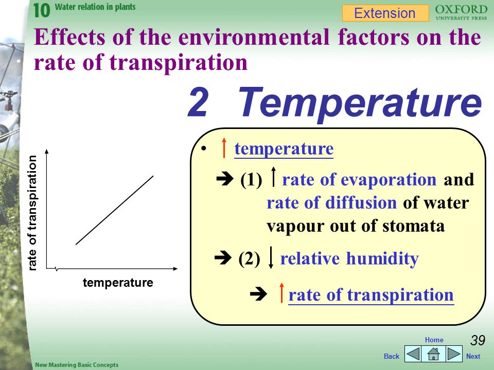 temperature and humidity on transpiration Effect of temperature and humidity on the transpiration rate of the whole  mushrooms pv mahajan , far oliveira, i macedo department of process  and.