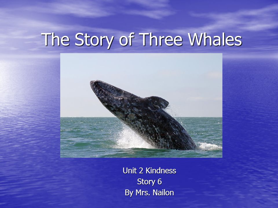 The Story of Three Whales