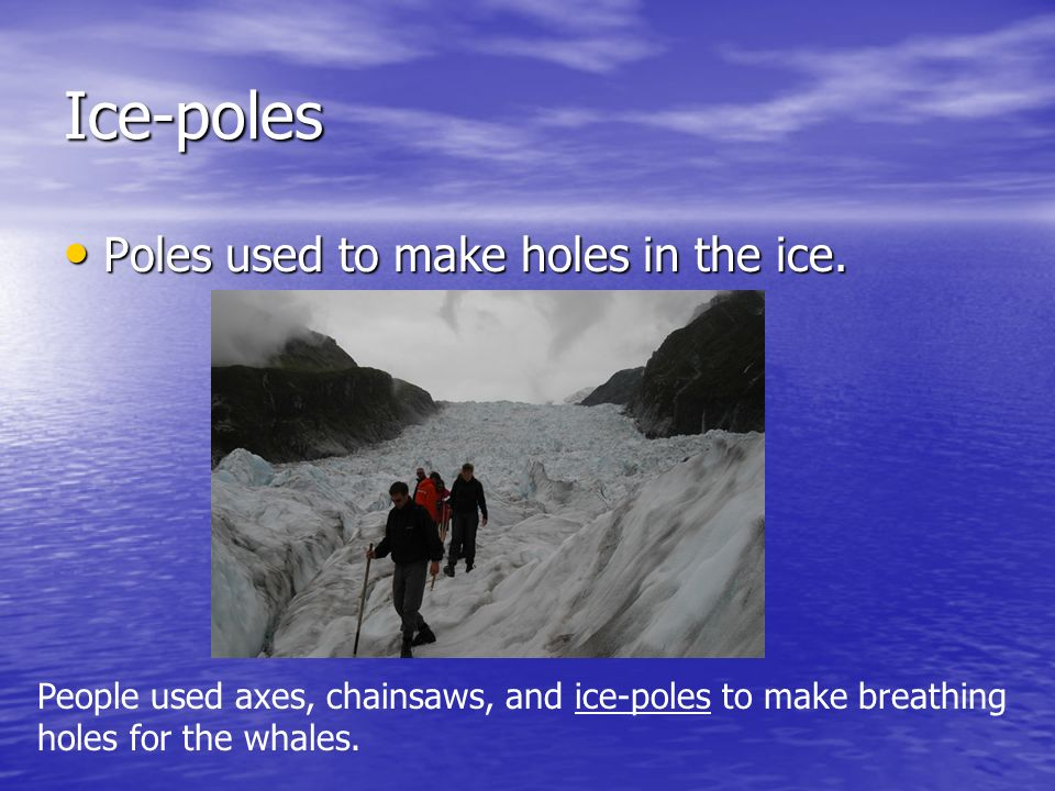 Ice-poles Poles used to make holes in the ice.