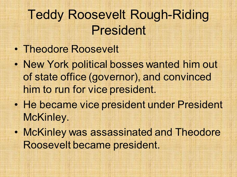 Teddy Roosevelt Rough-Riding President