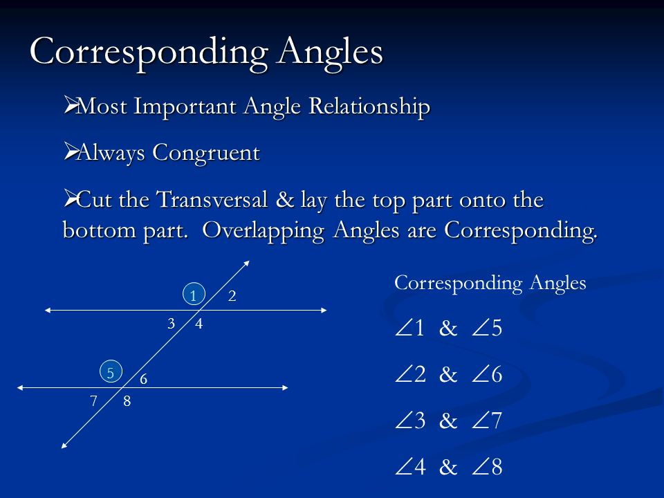Corresponding Angles Most Important Angle Relationship