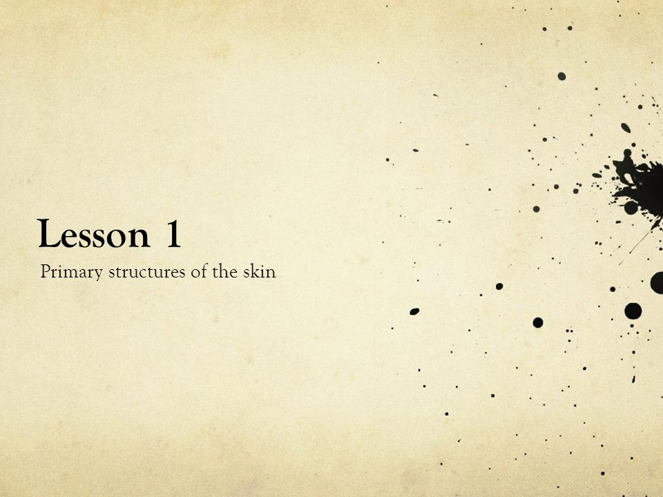 primary lessons on skin pdf
