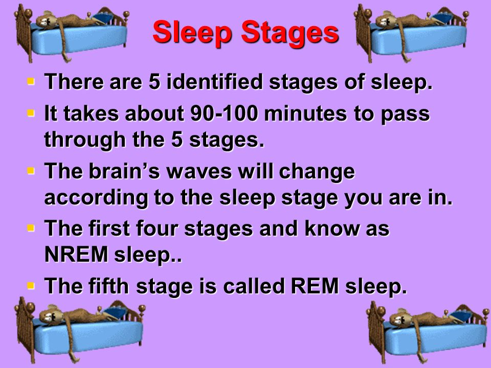 Sleep Stages There are 5 identified stages of sleep.