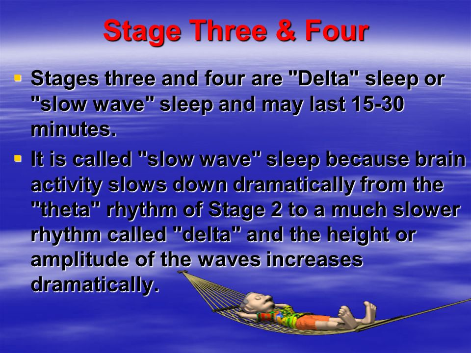 Stage Three & Four Stages three and four are Delta sleep or slow wave sleep and may last 15-30 minutes.