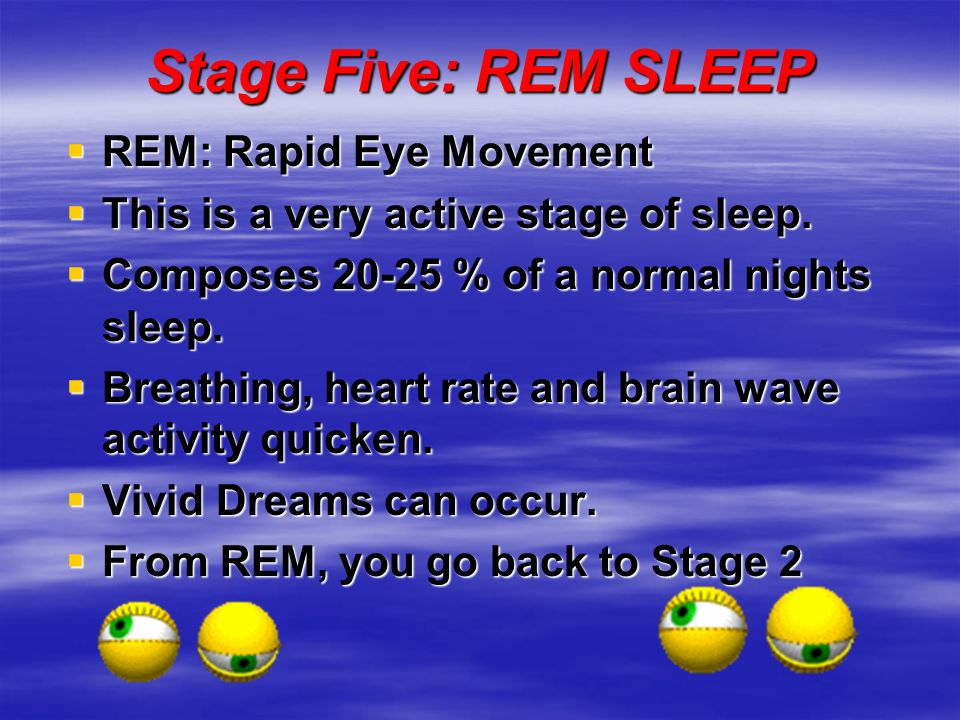 Stage Five: REM SLEEP REM: Rapid Eye Movement