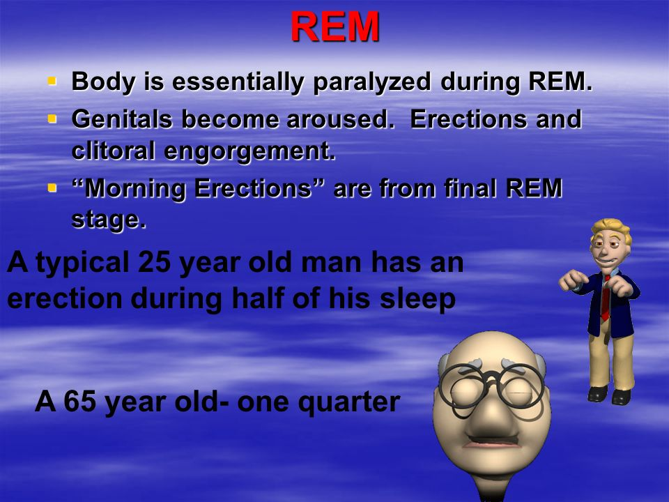 REM A typical 25 year old man has an erection during half of his sleep