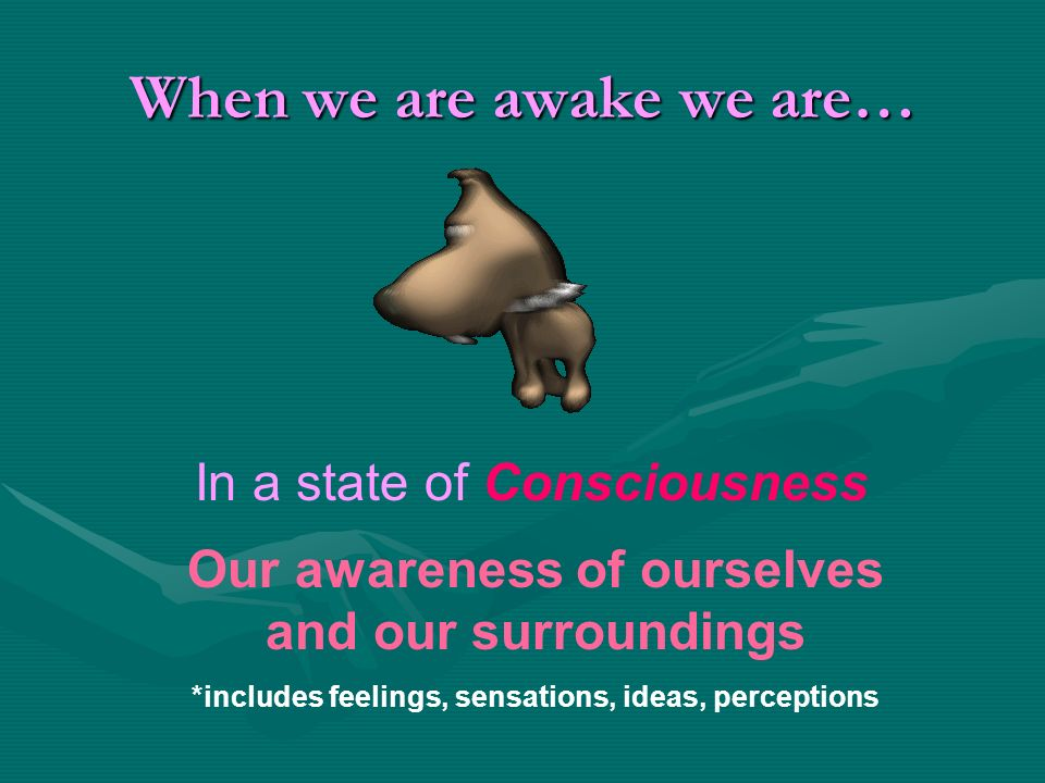 When we are awake we are…