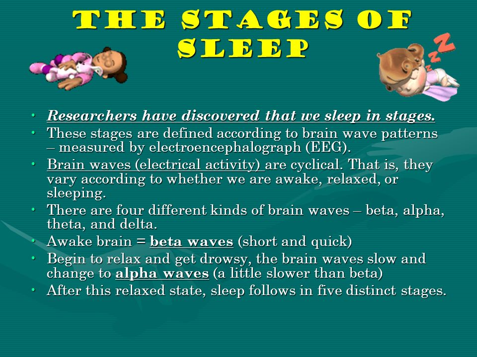The Stages of Sleep Researchers have discovered that we sleep in stages.