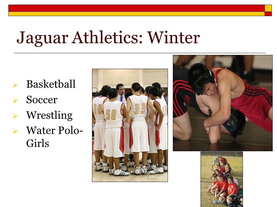 Jaguar Athletics: Winter