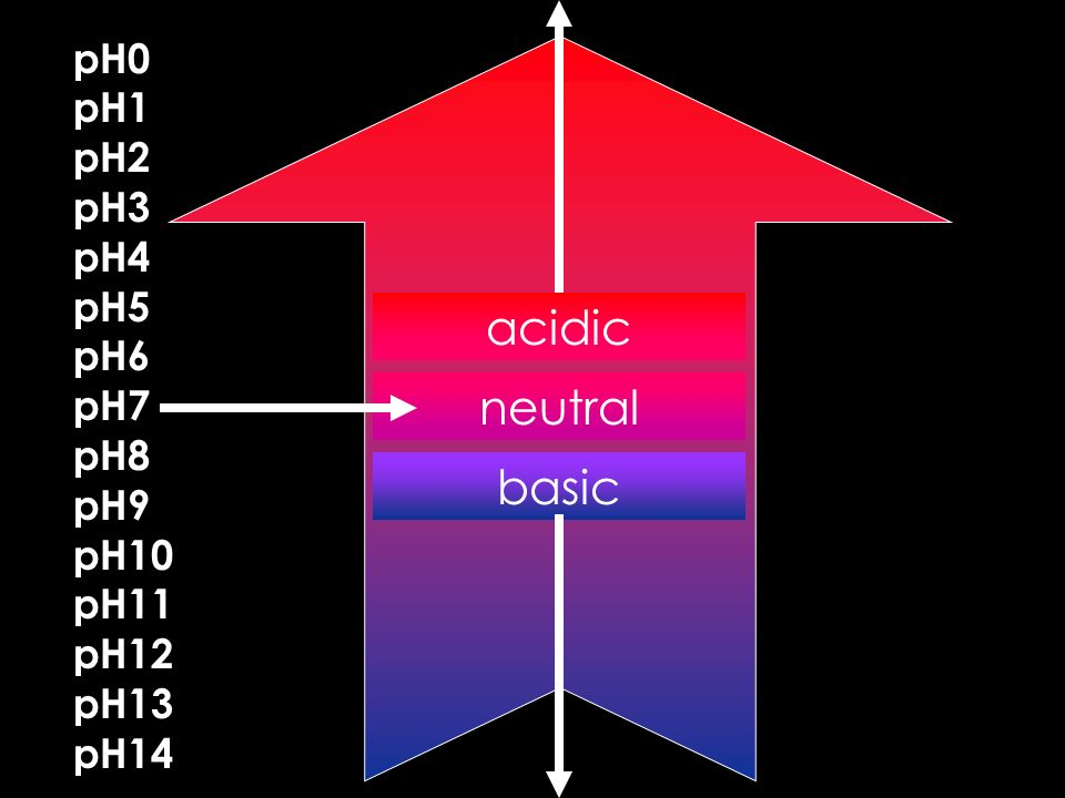 acidic neutral basic pH0 pH1 pH2 pH3 pH4 pH5 pH6 pH7 pH8 pH9 pH10 pH11