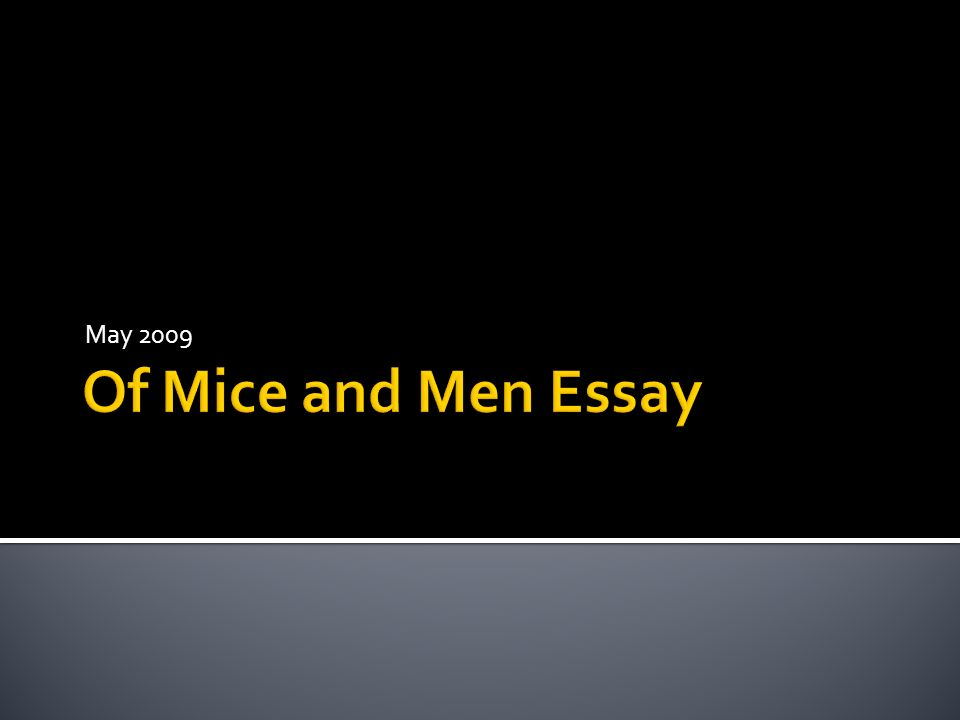 essay for of mice and men Introduction much like steinbeck's short novel the pearl, of mice and men is a parable that tries to explain what it means to be human essay questions.