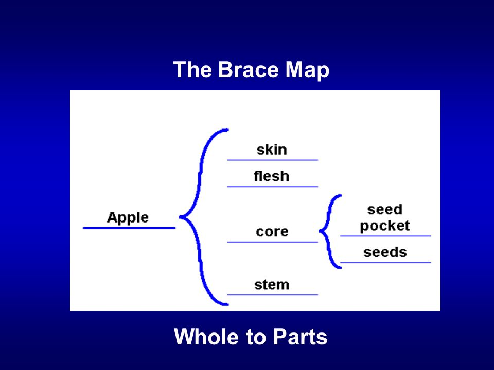 The Brace Map Whole to Parts