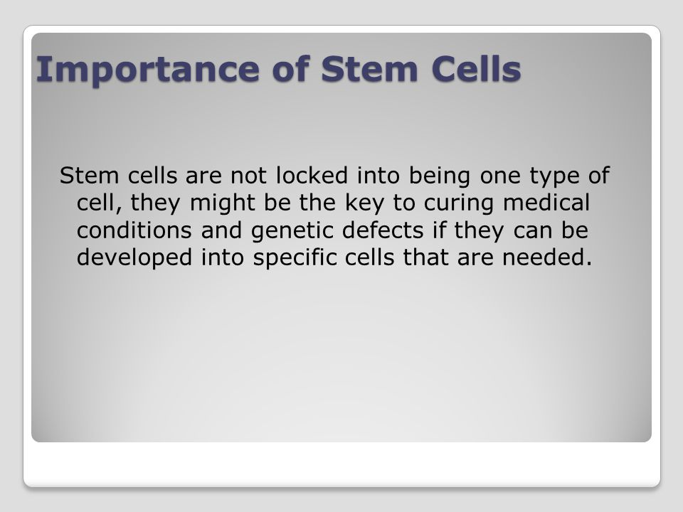 Importance of Stem Cells
