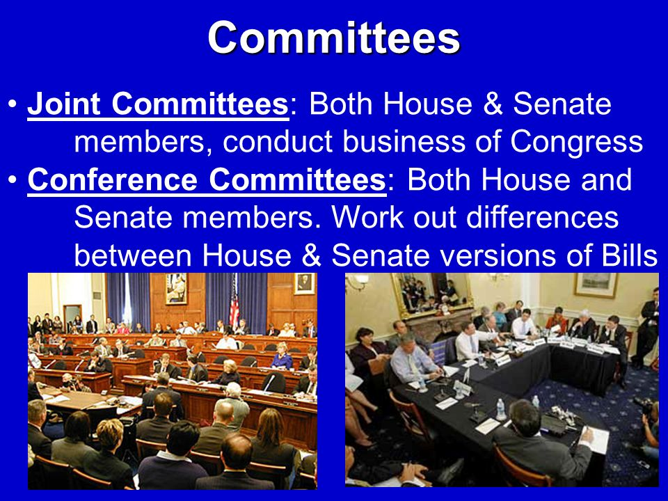 Committees Joint Committees: Both House & Senate members, conduct business of Congress.
