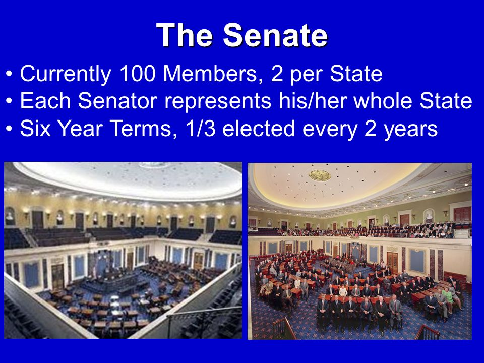 The Senate Currently 100 Members, 2 per State