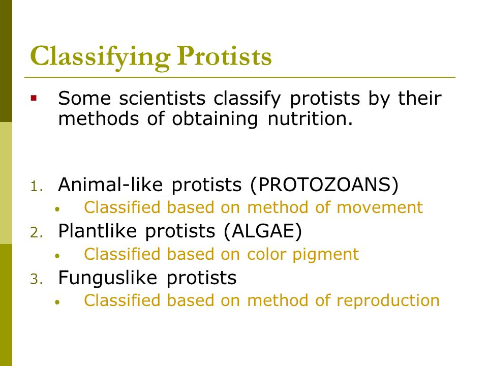 Classifying Protists Some scientists classify protists by their methods of obtaining nutrition. Animal-like protists (PROTOZOANS)