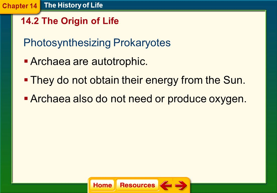 Photosynthesizing Prokaryotes