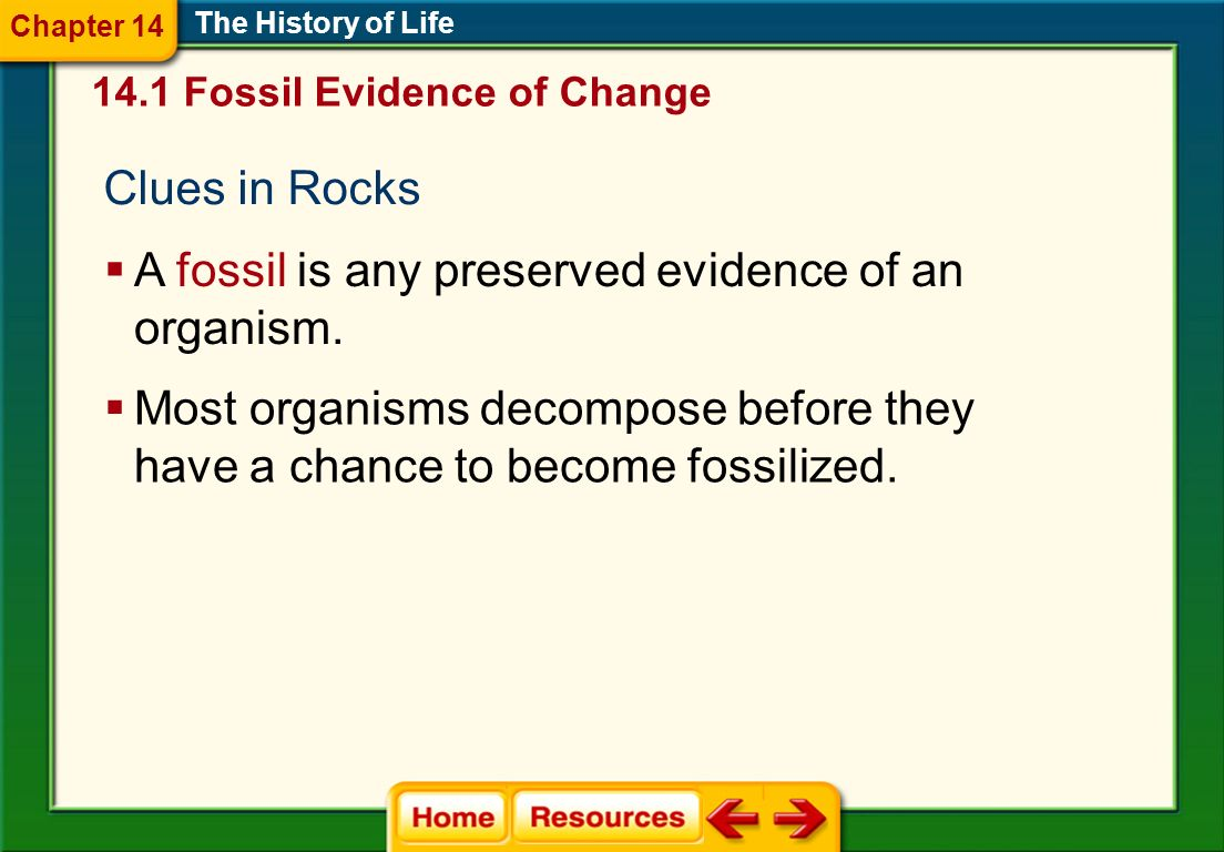 A fossil is any preserved evidence of an organism.