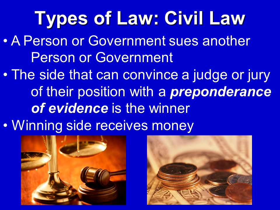 Types of Law: Civil Law A Person or Government sues another Person or Government.