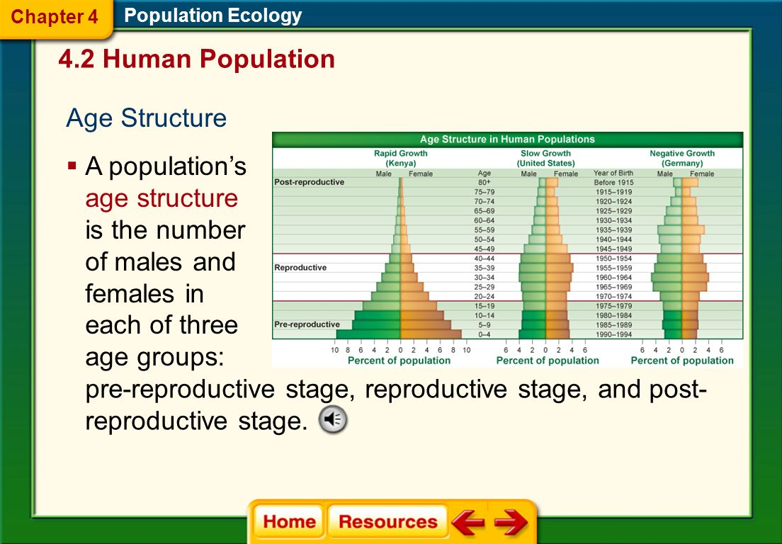 pre-reproductive stage, reproductive stage, and post-
