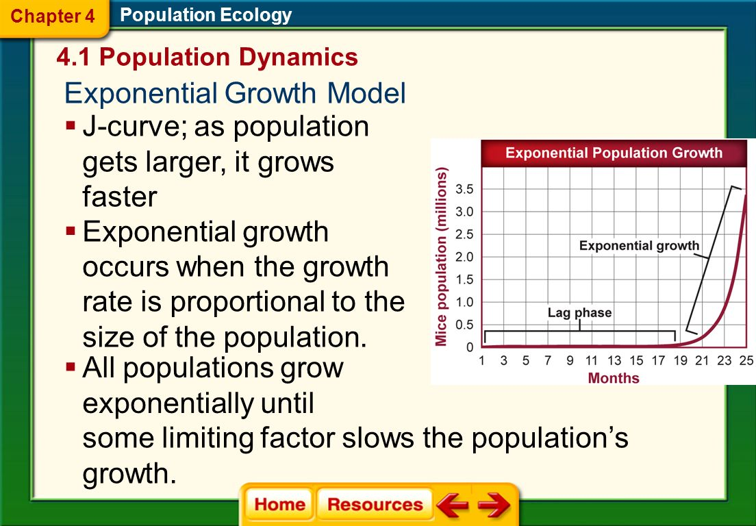 Exponential Growth Model
