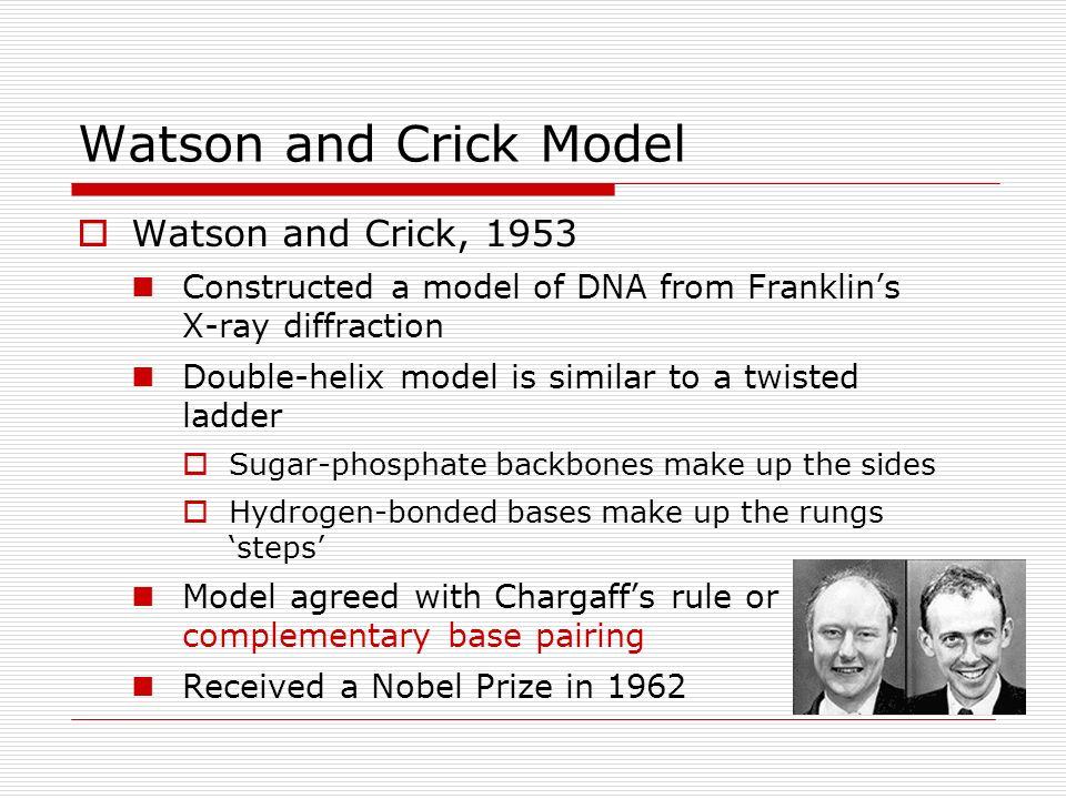 Chapter 12: Molecular ...