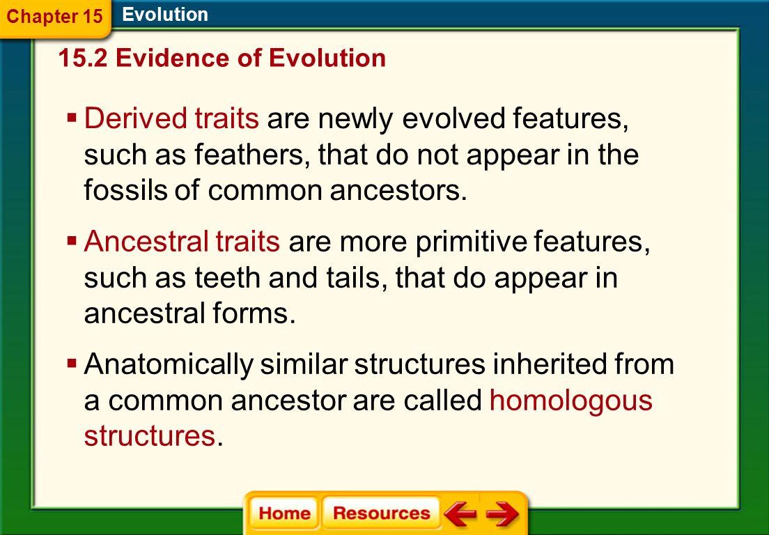Chapter 15 Evolution. 15.2 Evidence of Evolution.