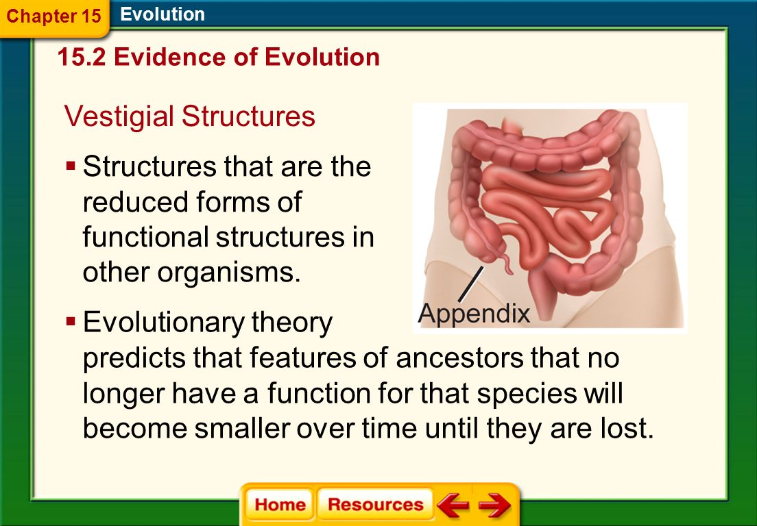predicts that features of ancestors that no